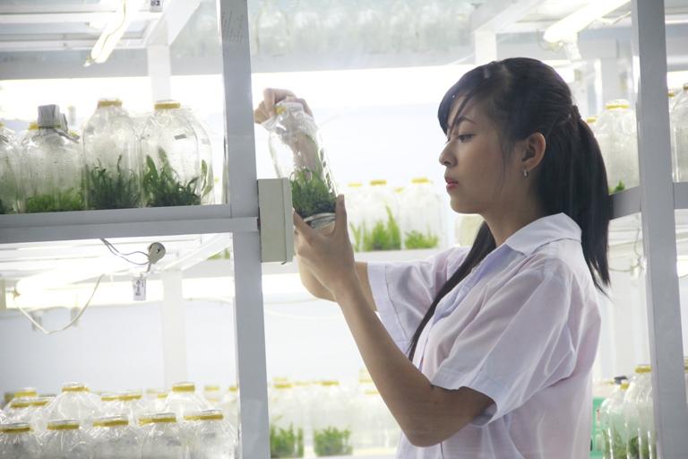 học ngành Công nghệ sinh học ở đâu
