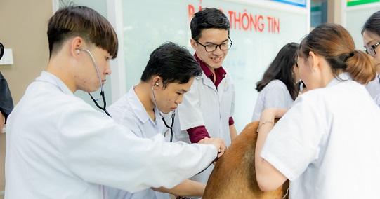 Viện Khoa học Ứng dụng HUTECH tổ chức các khóa tập huấn chuyên ngành cho bác sĩ Thú y và sinh viên